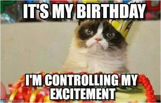 It S My Cat S Birthday Meme Grumpy Cat Birthday Birthday Pinterest Best Grumpy