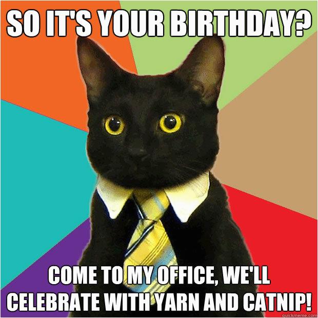 so its your birthday cat meme