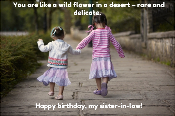 birthday quotes wishes for sister in law