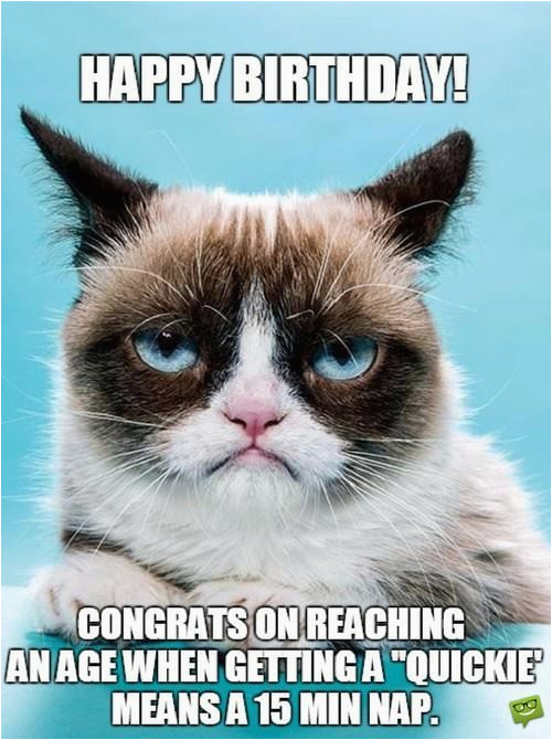 Sarcastic Birthday Memes Sarcastic Birthday Wishes Funny Messages for Those