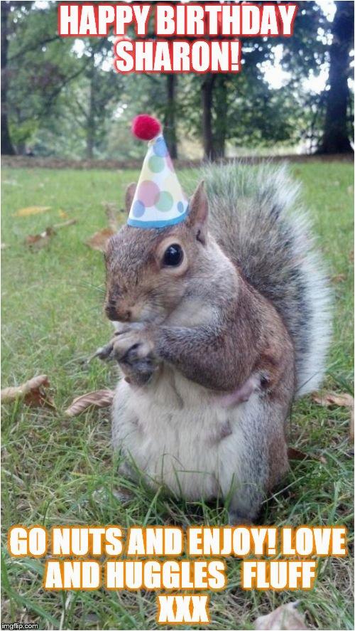 super birthday squirrel