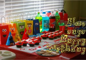 2 Year Old Birthday Decoration Ideas Two Elmo Party