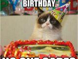21st Birthday Meme Girl I Heard It 39 S Your 21st Birthday No One Cares 21 Birthday
