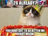 26 Birthday Meme 26 Already Grumpy Cat Birthday Meme On Memegen