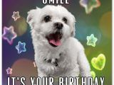 26 Birthday Meme top 29 Birthday Memes Quotes and Humor