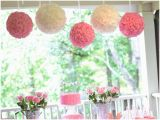 2nd Birthday Decorations for Girl Ruffles and Roses Second Birthday Party Pizzazzerie