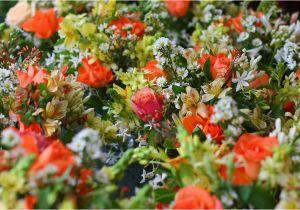 80th Birthday Flowers Plants 66 Square Feet Plus Flowers for An 80th Birthday