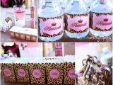 Animal Print Birthday Decorations A to Zebra Celebrations Leopard Princess Party