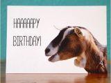 Baby Goat Birthday Card Goat Notecardhappy Birthday Goat 2 Handmade Birthday Card