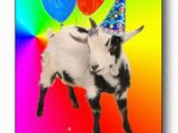 Baby Goat Birthday Card Goat Thing Of the Day the Litany Of Brittainy Nanny