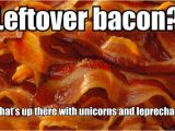 Bacon Birthday Meme 10 Crazy Bacon Memes Tiptoptens Com