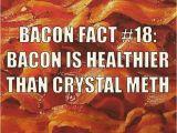 Bacon Birthday Meme Best 25 Bacon Memes Ideas On Pinterest Funny Vegan