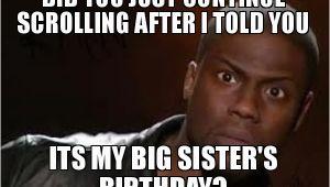 Big Sister Birthday Meme 20 Best Birthday Memes for Your Sister Sayingimages Com