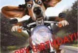 Biker Birthday Memes 15 top Happy Birthday Motorcycle Meme Jokes Quotesbae