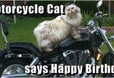 Biker Birthday Memes Motorcycle Happy Birthday Quotes Quotesgram