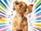 Birthday Card for A Dog Cocker Spaniel Puppy Music Luxury Glitter Birthday