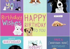 Birthday Card for A Dog Dogs Trust Charity Greeting Birthday Card by Waggy Tails