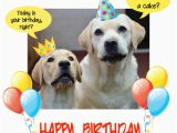 Birthday Card for A Dog Happy Birthday Dog Party Free Pets Ecards Greeting Cards