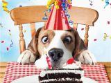 Birthday Card with Dogs Beagle Luxury Glitter Funny Birthday Greeting Card Dog
