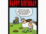 Birthday Cards for Old People World Of Cow Birthday Card Old People Zazzle