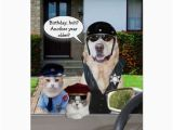 Birthday Cards for Police Officers Funny Lab Cat Officers Birthday Card Zazzle