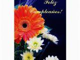 Birthday Cards In Spanish Feliz Cumpleanos Spanish Birthday Feliz Cumpleanos Greeting Card Zazzle