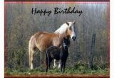 Birthday Cards with Horses Happy Birthday Wishes with Horses Page 5