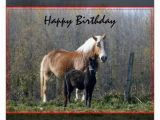 Birthday Cards with Horses On them Happy Birthday Horses Greeting Card