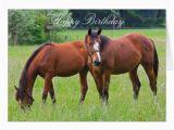 Birthday Cards with Horses On them Horse Beautiful Custom Horses Birthday Card Zazzle Com