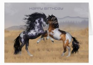 Birthday Cards with Horses On them Wild Horses Birthday Greeting Card