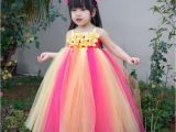 Birthday Dresses for toddlers Images Of Tulle Birthday Dresses Other Dresses Dressesss