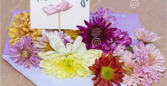 Birthday Flower Card Message Chrysanthemums Flowers In Violet Envelope with I Happy