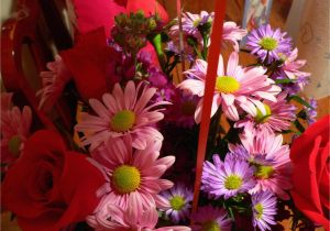 Birthday Flowers by Post Birthday Flowers 150×150 Occasions Hd Wallpapers