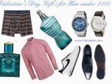 Birthday Gift Ideas for Him Under $100 Valentine 39 S Day Gift Idea 39 S for Him Under 100 the Hotjem