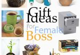 Birthday Gifts for Male Boss 20 Gift Ideas for Female Boss Office Gifts Boss
