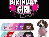 Birthday Girl Dog Shirt Dog Clothes Birthday Girl Screen Print T Shirt for Dogs