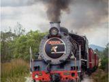 Birthday Ideas for Him Cape town Steam Train Trips Cape town Steam Train Rides south