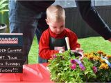 Birthday Ideas for Him Perth Perth Four Year Old Has the Most Australian Birthday Ever