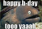 Birthday Meme Fishing Birthday Fish Puns