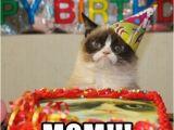 Birthday Meme for Moms 20 Memorable Happy Birthday Mom Memes Sayingimages Com