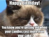 Birthday Meme Getting Old 25 Really Cool Birthday Memes to Send to Your Loved Ones