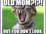 Birthday Meme Mum Funny Birthday Memes for Dad Mom Brother or Sister