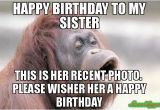 Birthday Memes for Brother From Sister 20 Hilarious Birthday Memes for Your Sister Sayingimages Com