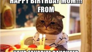 Birthday Memes for Mom Happy Birthday Mom Memes Wishesgreeting