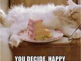 Birthday Memes with Cats Happy Birthday Meme Cats Birthday Memes T Happy