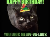 Black Cat Birthday Meme Her Birthday is Funny Happy Birthday to Her She Day B