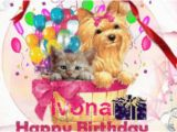 Blingee Birthday Cards Happy Birthday Ivona My Blingee Sets Pinterest Happy