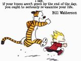 Calvin and Hobbes Happy Birthday Quotes Calvin and Hobbes Birthday Quotes Quotesgram Calvin