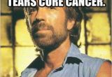 Cancer Birthday Memes 43 Chuck norris Memes that are so Badass they Should Get