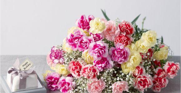Carnation Birthday Flowers Birthday Flower Gift Birthday Flowers Gifts Uk Bunches
